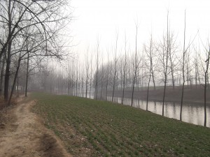 中国河南省